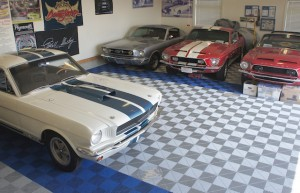 Some of Musselwhite's Mustangs