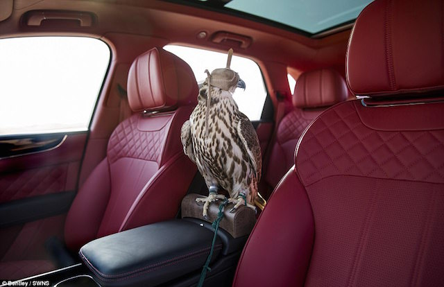 4087BD9700000578-4522128-The_Bentayga_Falconry_by_Mulliner_which_costs_a_whopping_75_000_-a-60_1495194628132